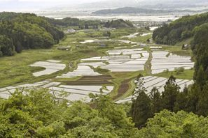 Higashine (Yamagata)