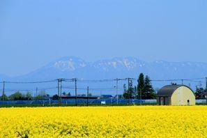 Iwamizawa (Hokkaido)