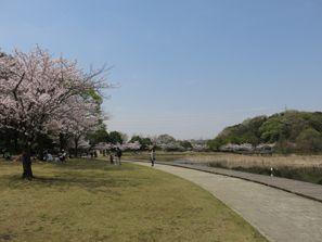 Matsudo (Chiba)
