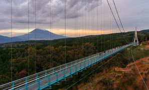 Mishima (Shizuoka)
