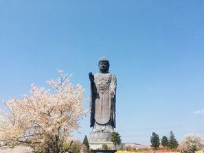 Ushiku (Ibaraki)